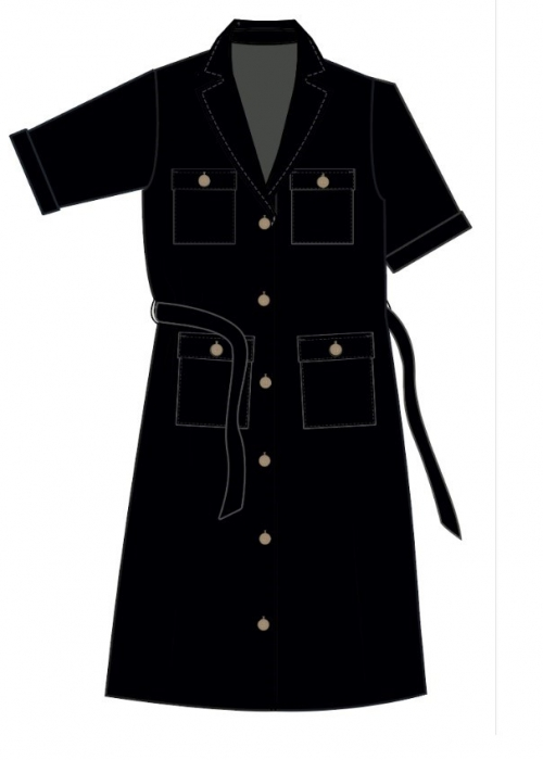 Eria Emerson SS Shirt dress